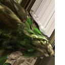 Изумрудный дракон (Emerald Dragon)