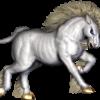 warunicorn